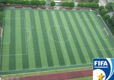 Queenstown-Secondary-School-FIFA-1-STAR-Certified-500x400